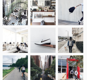 Everlane Instagram Feed